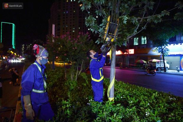 Ảnh: Di dời hàng cây phong lá đỏ trên 2 tuyến phố Hà Nội ngay trong đêm - Ảnh 12.
