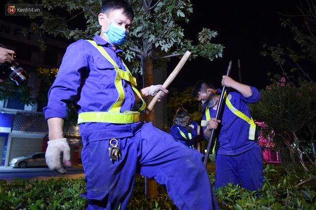Ảnh: Di dời hàng cây phong lá đỏ trên 2 tuyến phố Hà Nội ngay trong đêm - Ảnh 10.