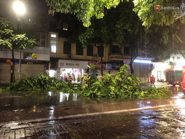 Hàng loạt cây xanh gãy đổ khắp đường phố Hà Nội sau cơn mưa giông tầm tã - Ảnh 5.