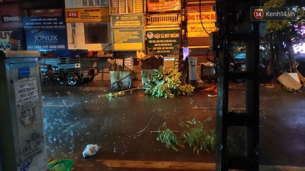 Hàng loạt cây xanh gãy đổ khắp đường phố Hà Nội sau cơn mưa giông tầm tã - Ảnh 9.