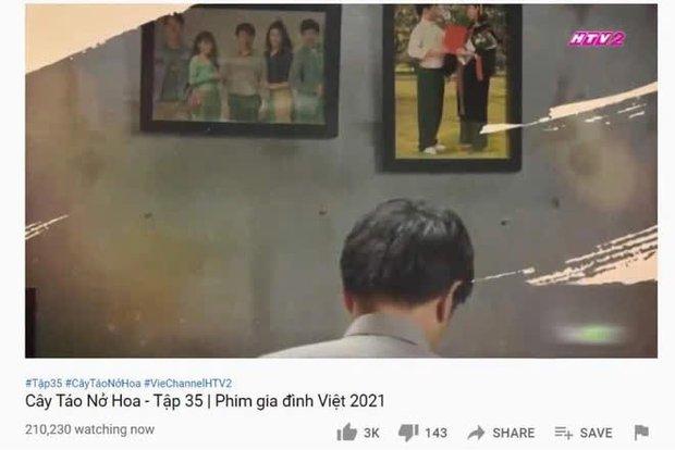 Cây Táo Nở Hoa lập kỉ lục mới cho phim truyền hình Việt dù drama liên hoàn khiến người xem phát điên - Ảnh 1.