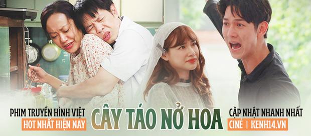 Cây Táo Nở Hoa lập kỉ lục mới cho phim truyền hình Việt dù drama liên hoàn khiến người xem phát điên - Ảnh 6.