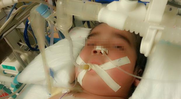 2 bé trai sinh đôi 1 tử vong, 1 bị tổn thương não nghiêm trọng chỉ vì hành động trêu đùa mà nhiều ông bố hay làm - Ảnh 2.