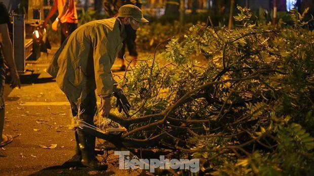 Gần 300 cây xanh ngã đổ ở Hà Nội sau trận mưa dông tối qua - Ảnh 1.