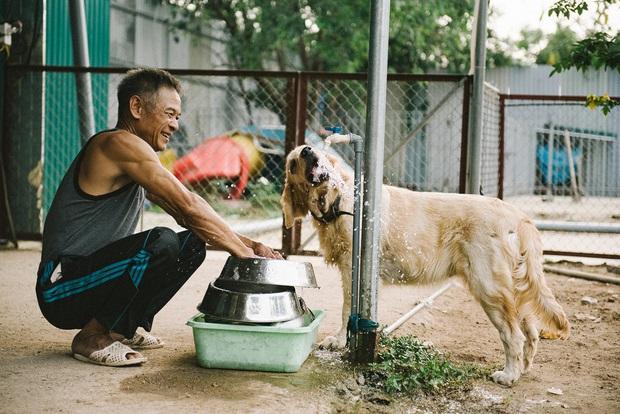 Hành trình của một chú chó hoang từng bị đánh, bắt đến bến đỗ trong ngôi nhà hạnh phúc cho chó mèo ở Hà Nội - Ảnh 36.