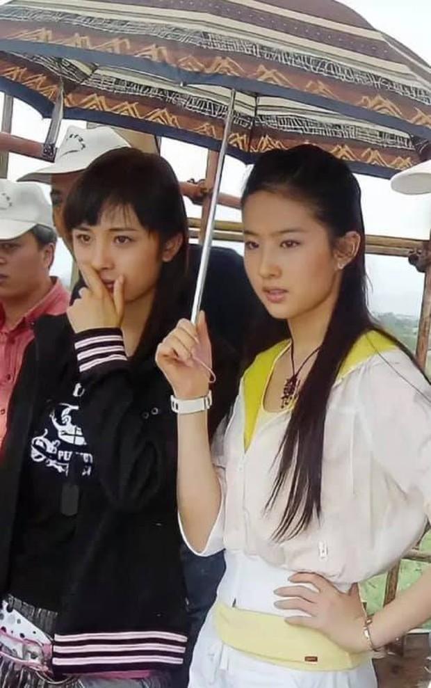 Nhan sắc Dương Mịch hồi Thần Điêu Đại Hiệp đâu thua gì Lưu Diệc Phi, ai ngờ bị fan phim ghét bỏ một thời - Ảnh 1.