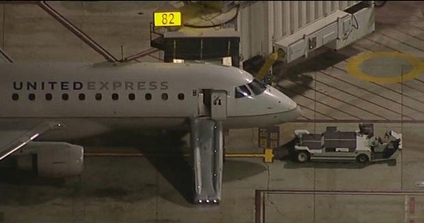 Hoảng hồn người đàn ông nhảy khỏi máy bay đang di chuyển tại Mỹ - Ảnh 1.