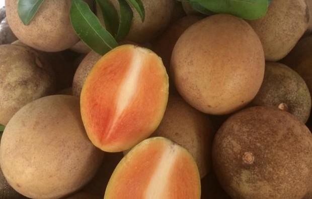 Việt Nam có loại trái cây cực quen thuộc nhưng lại nằm trong danh sách những loại quả lạ nhất thế giới, bạn từng ăn thử chưa? - Ảnh 4.
