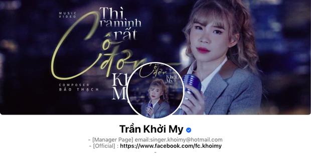 Top nghệ sĩ Việt có lượng follower trên fanpage khủng nhất, Sơn Tùng M-TP chỉ đứng thứ 2, ai mới là người đứng đầu? - Ảnh 2.