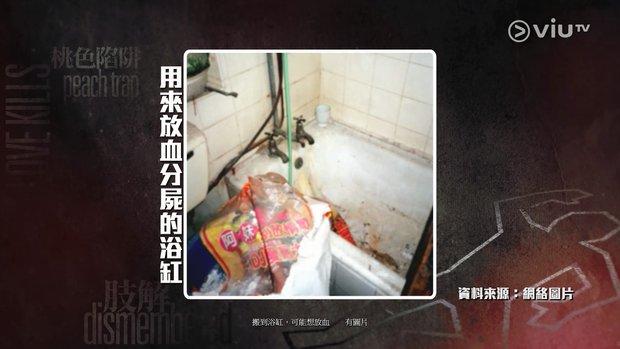 Vụ giết người chặt xác cực chấn động lên phim: Nạn nhân bị tra tấn 30 ngày đến chết, thẩm phán gốc Việt bắt thủ phạm trả giá - Ảnh 6.