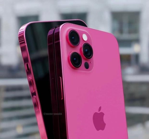 Hình ảnh nghi vấn iPhone 13 màu hồng bất ngờ xuất hiện trên mạng xã hội, iFan khắp thế giới lại phải thao thức rồi! - Ảnh 1.