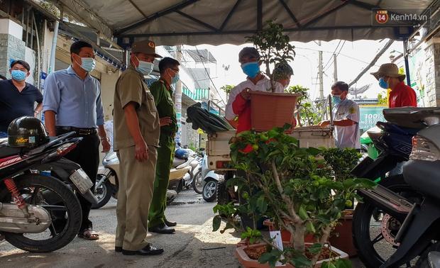 Góc cưng xỉu: Người dân Sài Gòn trong khu cách ly thi trồng cây táo, chờ táo nở hoa - Ảnh 3.