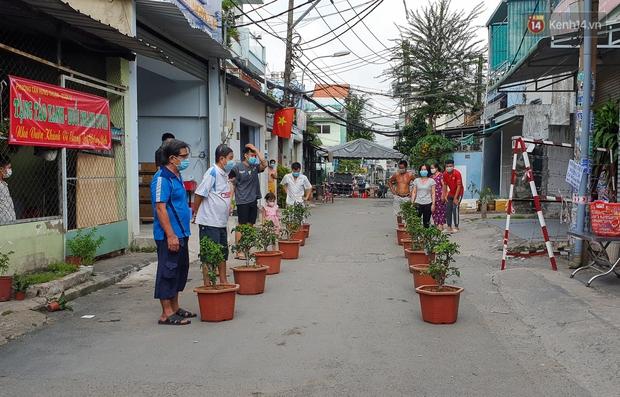 Góc cưng xỉu: Người dân Sài Gòn trong khu cách ly thi trồng cây táo, chờ táo nở hoa - Ảnh 6.
