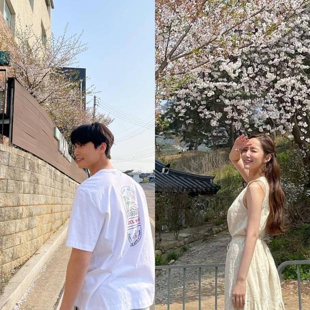 Phát hiện nhà của Park Seo Joon - Park Min Young cách nhau có... 10 mét: Bước chân sang là hẹn hò được còn gì? - Ảnh 4.