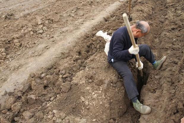 Đào được mộ cổ, ông lão bí mật mang gạch về nhà, nào ngờ vài năm sau gặp tai ương lớn - Ảnh 1.