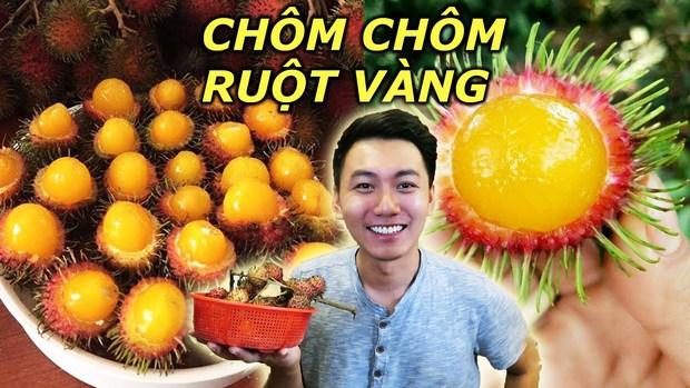 Việt Nam có những loại quả rừng dù mọc dại nhưng giá bán không hề rẻ tí nào, hương vị thì khác xa anh chị em cùng dòng họ - Ảnh 5.