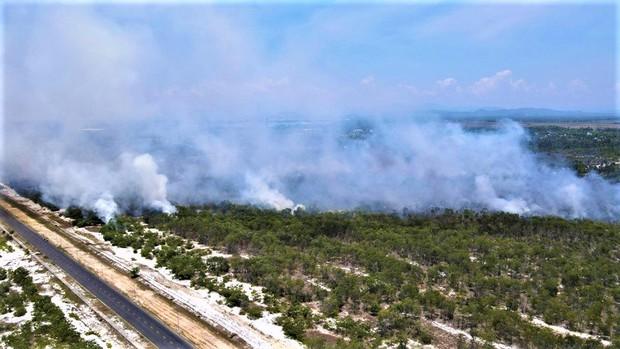 Rừng phòng hộ ven biển bốc cháy dữ dội, hàng trăm người nỗ lực dập lửa - Ảnh 1.