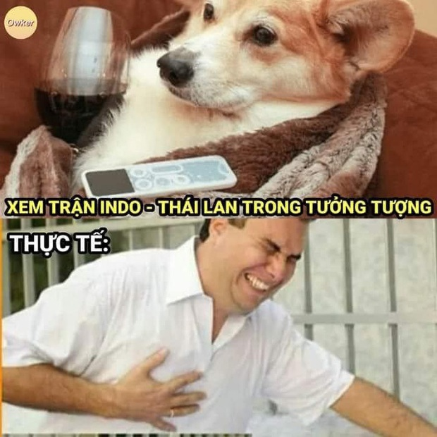 Fan Việt Nam chế loạt ảnh cà khịa Thái Lan sau trận đấu với Indonesia - Ảnh 2.