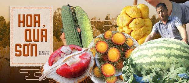 Trái sầu riêng tí hon nhất Việt Nam: Kích thước chỉ bằng một quả chôm chôm, xẻ ra bên trong đảm bảo ai cũng té ngửa - Ảnh 4.
