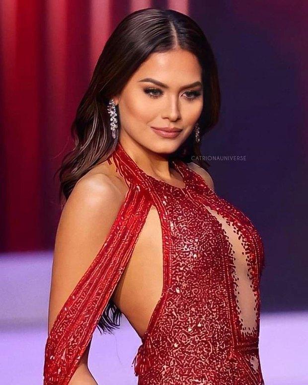 Sau 3 tuần đăng quang, Tân Miss Universe bỗng công khai bạn trai: Ngỡ ngàng còn là người nằm vùng trong cuộc thi! - Ảnh 5.