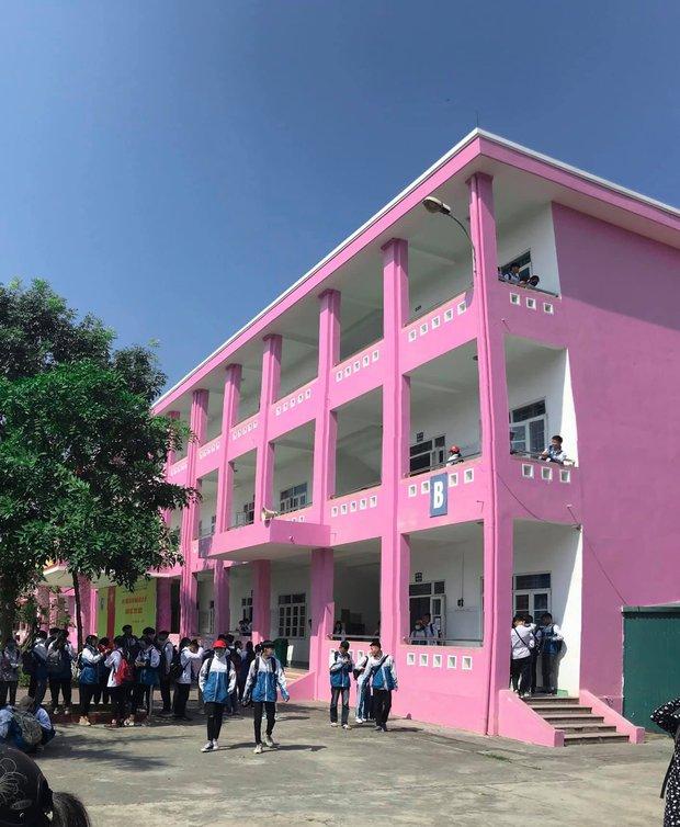 Ngôi trường sơn toàn màu hồng cánh sen, nhìn xa trông lóa mắt, lại gần thì đúng chuẩn cho hội bánh bèo đây! - Ảnh 1.
