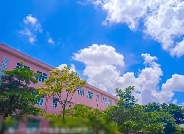 Ngôi trường sơn toàn màu hồng cánh sen, nhìn xa trông lóa mắt, lại gần thì đúng chuẩn cho hội bánh bèo đây! - Ảnh 3.