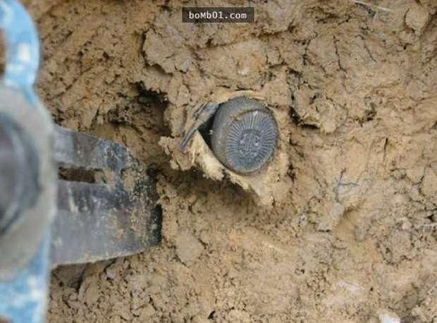 Chàng trai may mắn đào trúng đồng xu cổ trên núi: Khi đào xuống sâu hơn, anh đã bỏ chạy vì sợ hãi! - Ảnh 1.