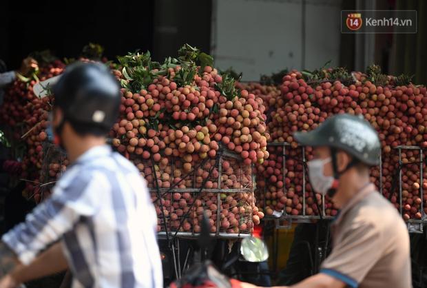 Vải thiều Lục Ngạn, Bắc Giang nhộn nhịp thu hoạch và tiêu thụ ngay từ đầu vụ - Ảnh 7.