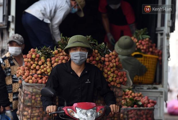 Vải thiều Lục Ngạn, Bắc Giang nhộn nhịp thu hoạch và tiêu thụ ngay từ đầu vụ - Ảnh 5.