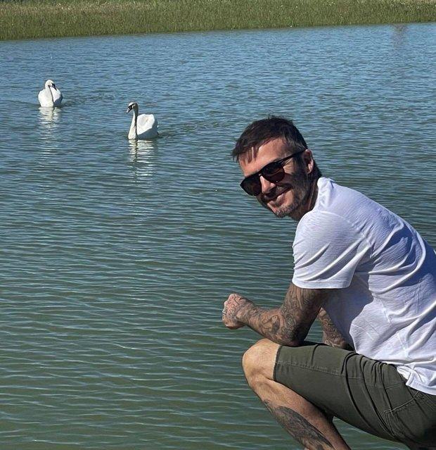 Cô út Harper Beckham sống ảo bên hồ thiên nga trong nhà nông thôn 1.955 tỷ, góc chụp dìm mà nhan sắc cân hết đỉnh ghê - Ảnh 3.