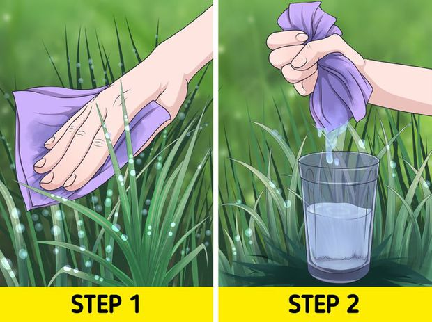 6 bí kíp siêu hữu ích mà ai cũng cần học, vì chúng có thể cứu lấy bạn vào một ngày nào đó - Ảnh 1.