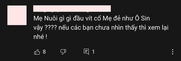 Tranh cãi nảy lửa hành động Phi Nhung hôn thô bạo Hồ Văn Cường, ghì cổ mẹ ruột của cậu trên sóng livestream? - Ảnh 5.