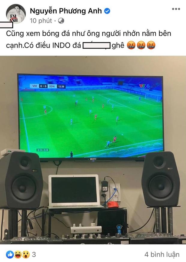 Trương Quỳnh Anh, Nam Thư và dàn sao Việt bày tỏ sự phẫn nộ khi thấy cầu thủ Việt Nam bị đội tuyển Indonesia chơi xấu - Ảnh 10.