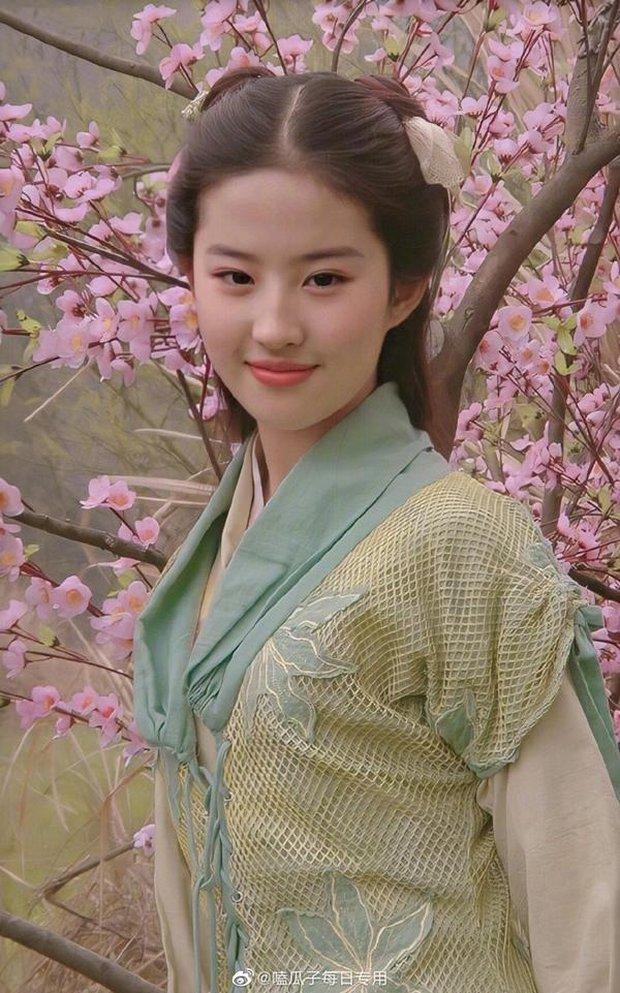 Tuổi 18 của mỹ nhân Hoa ngữ trên màn ảnh: Lưu Diệc Phi đẹp không tì vết, trùm cuối để lộ bằng chứng dao kéo - Ảnh 3.