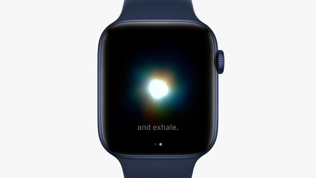 Apple Watch vừa được Apple cập nhật những tính năng gì? - Ảnh 1.