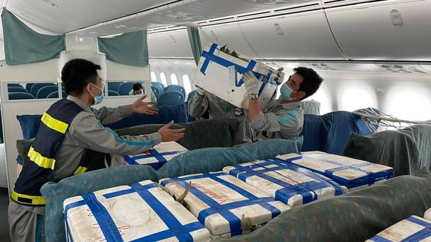 Bố trí riêng một siêu máy bay chở 40 tấn vải thiều Bắc Giang đi TP.HCM - Ảnh 3.
