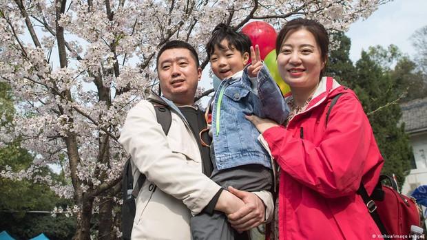 Chính sách ba con không chặn được đà dân số rơi tự do ở Trung Quốc - Ảnh 2.