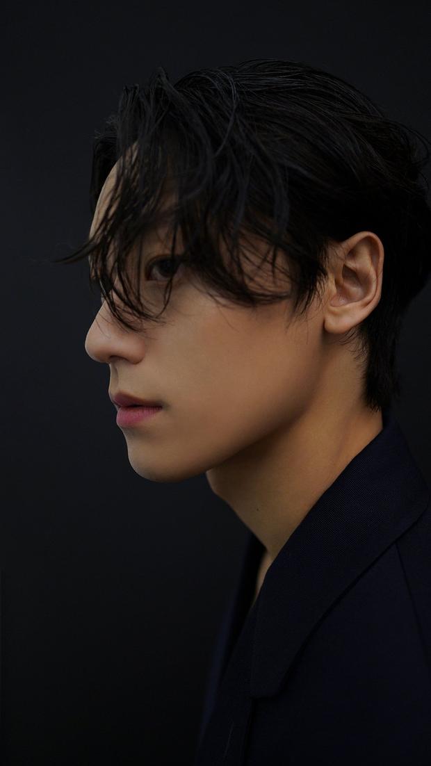 5 tân binh nam thần hạng xịn ở màn ảnh Hàn: Đủ cả sắc lẫn tài như Lee Do Hyun thì ai mà không u mê - Ảnh 5.