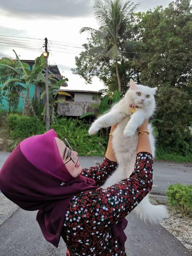 Tìm thấy cô mèo nhỏ đang hấp hối ở sân sau, cô gái mát tay chăm bẵm khiến con vật lột xác hoàn toàn sau 5 tháng - Ảnh 11.