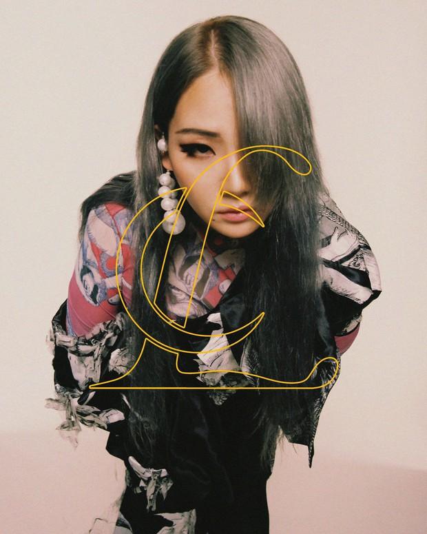 Cựu thành viên 2NE1 bất ngờ đầu quân về công ty của hậu bối gen 3, netizen cà khịa: Tuyển gà về dạy hát cho chủ tịch - Ảnh 3.