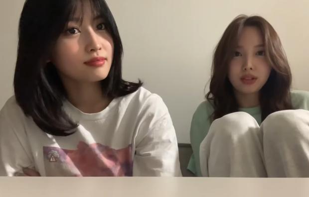 Soi lại MV Like OOH-AHH mới thấy Momo (TWICE) khóc sưng cả mắt, còn doạ Nayeon sẽ bị quật vì thái độ cợt nhả - Ảnh 1.