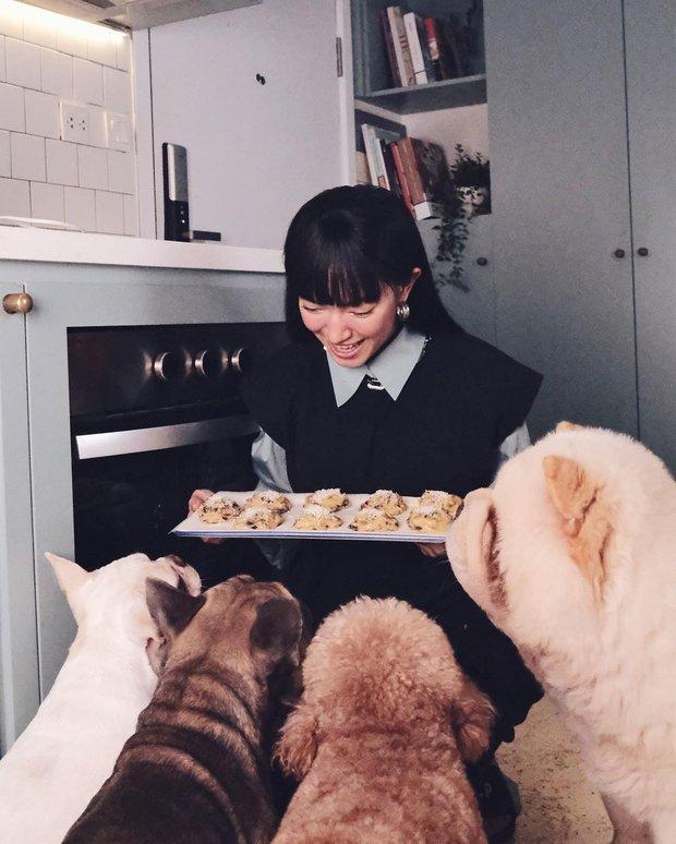 Tình hình cõi mạng những ngày này: Gái đẹp kiêm luôn gái đảm, ngày 2 bữa cơm nhà là best - Ảnh 6.
