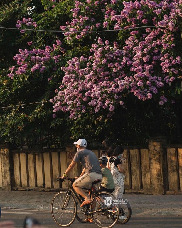 30 điều PHẢI LÀM ở Hà Nội khi mùa dịch qua đi - Ảnh 1.
