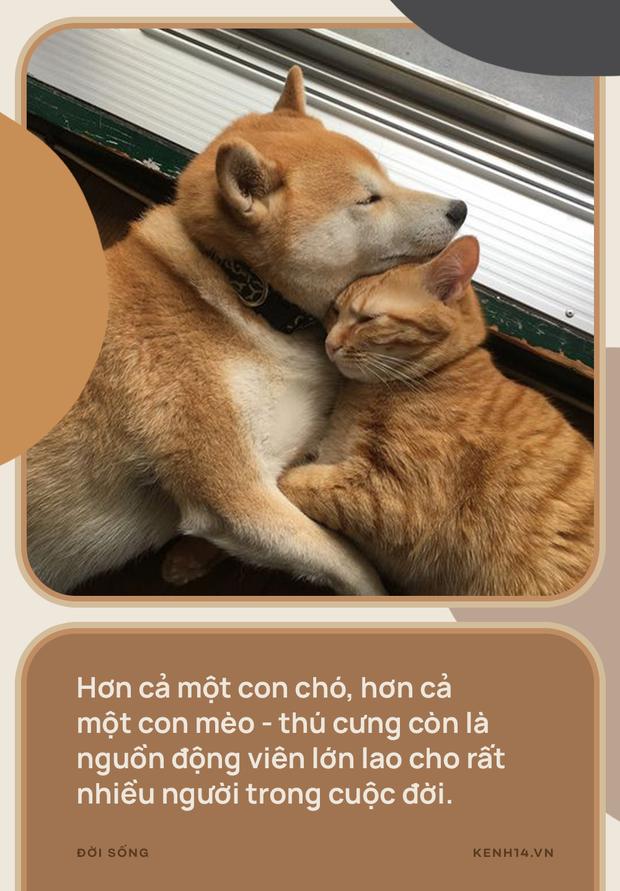 Vì sao đừng nói thú cưng chỉ là chó, mèo? - Ảnh 1.
