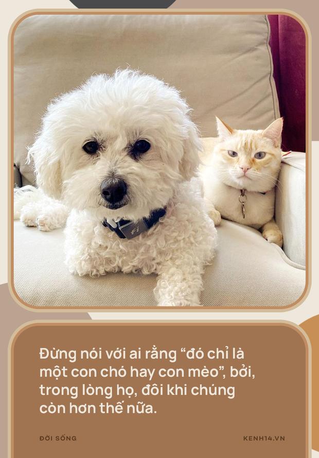 Vì sao đừng nói thú cưng chỉ là chó, mèo? - Ảnh 5.