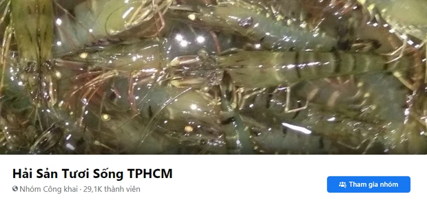 Các group bán thực phẩm tươi sống ở Sài Gòn xôm nhất lúc này: Tiểu thương đăng bài rôm rả, thịt cá hải sản phong phú - Ảnh 13.
