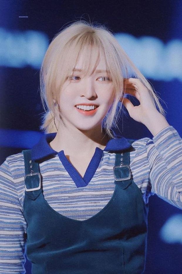 Wendy (Red Velvet) tham gia show hài 18+, fan sửng cổ đòi SM mau rút gà nhà! - Ảnh 1.