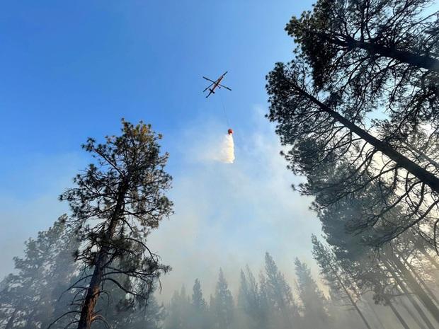 Cháy rừng bùng phát mạnh ở các bang miền Tây nước Mỹ, hàng nghìn ngôi nhà bị ảnh hưởng - Ảnh 4.