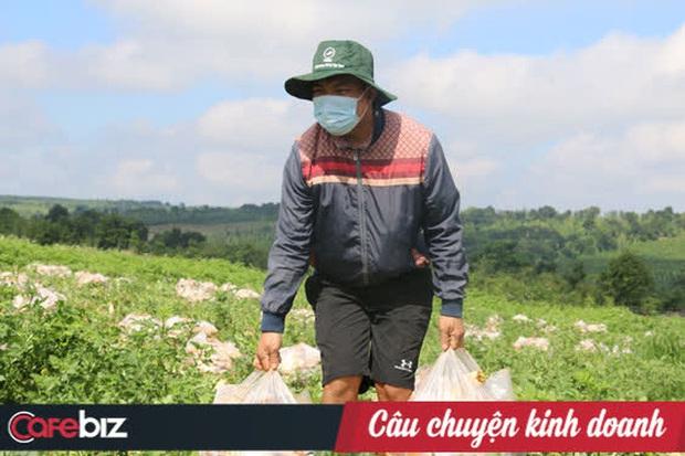 Nông dân tặng Sài Gòn cả vườn rau, sao doanh nghiệp lớn sá gì không chịu hi sinh vài đồng lợi nhuận: Một miếng bình ổn giá thời dịch hơn cả gói khuyến mãi ngày thường! - Ảnh 4.