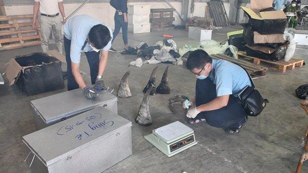 Đà Nẵng bắt container chứa hàng tấn sừng tê giác và xương động vật núp bóng gỗ Nam Phi - Ảnh 5.